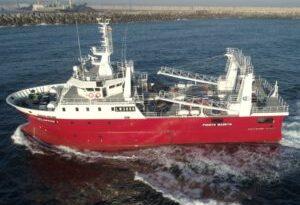 Langostino: crece el número de congeladores que se suman a la pesca