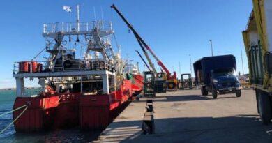 En dos semanas la flota tangonera descargó por el puerto deseadense más de mil toneladas de langostino